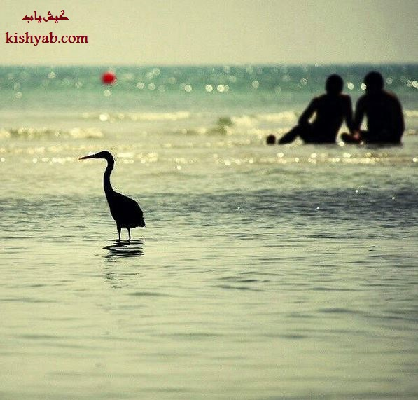 تصاویر زیبا و خلاقانهی جزیره کیش